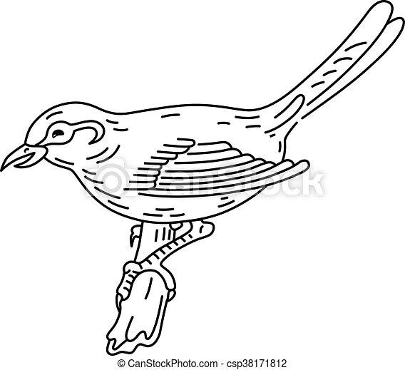 Bird sitting on a branch - csp38171812