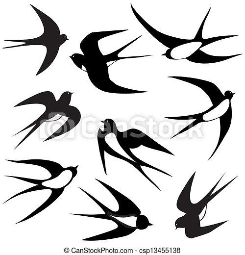 Bird Swallow Set Vector Illustration Poses Isolated On
