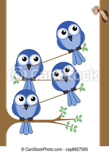 Bird teamwork  - csp8627565