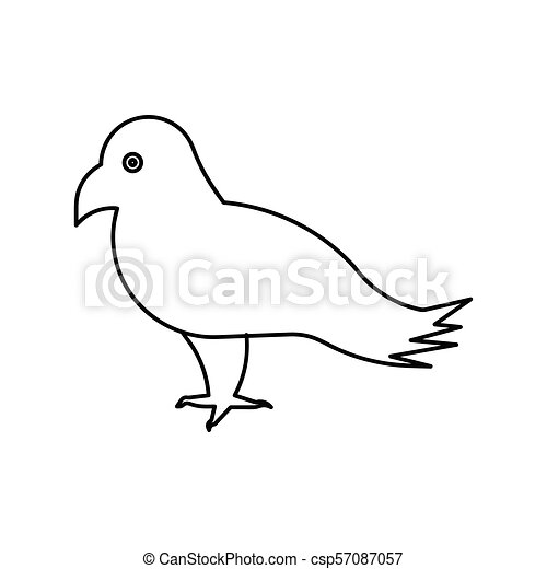Bird vector outline icon - csp57087057