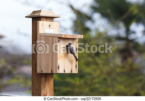 Birdhouse - csp32172505