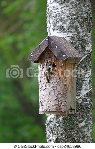 Birdhouse and tiny bird - csp24653996