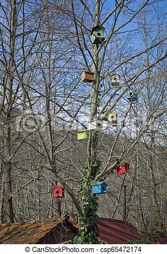 Birdhouse - csp65472174