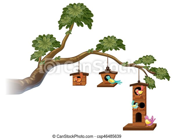 Birdhouses with birds on the branch - csp46485639