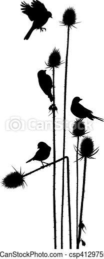 Birdie on a thistle.eps - csp41297559