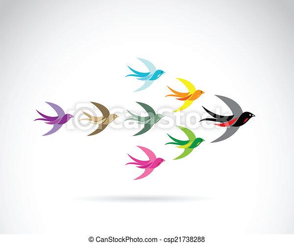 birds., conceito, grupo, coloridos, vetorial, trabalho equipe, andorinha - csp21738288