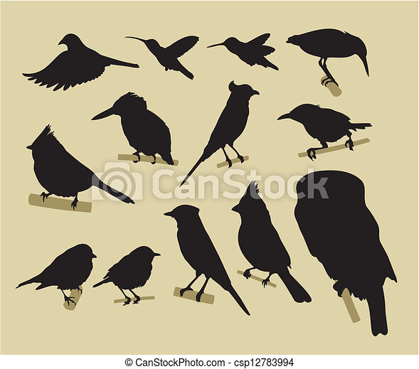 birds - csp12783994