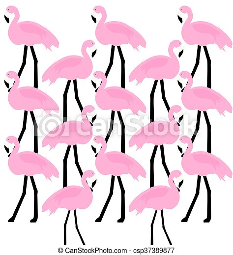 birds Flamingo - csp37389877