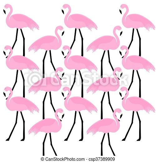 birds Flamingo - csp37389909