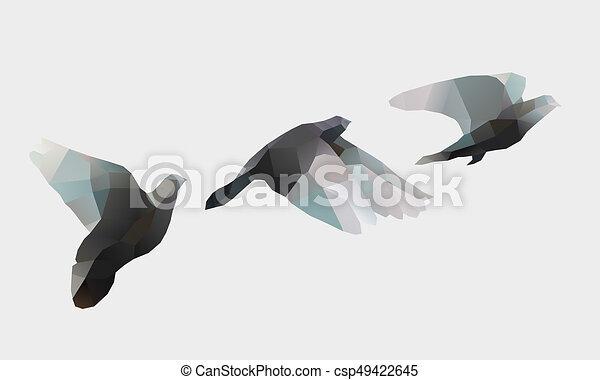 birds fly on white - csp49422645