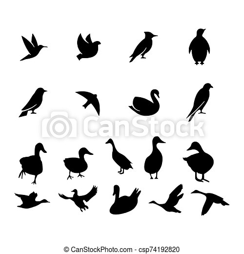 Birds icon isolated on background Vector illustration - csp74192820