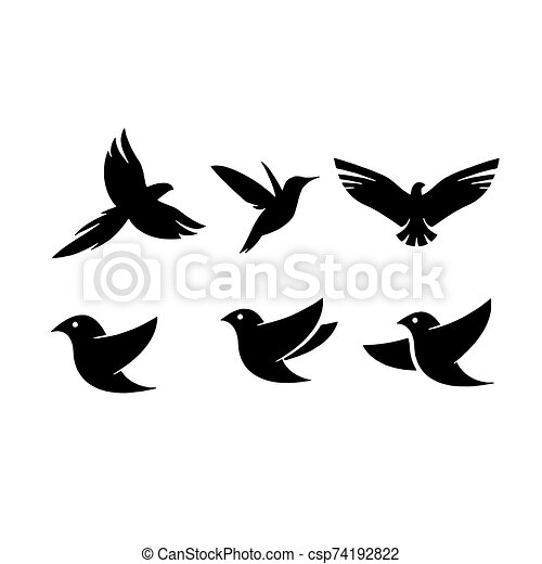 Birds icon isolated on background Vector illustration - csp74192822