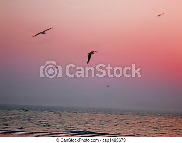 Birds in Paradise II - csp1493673