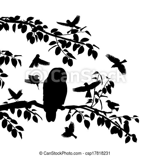 Birds mobbing owl - csp17818231