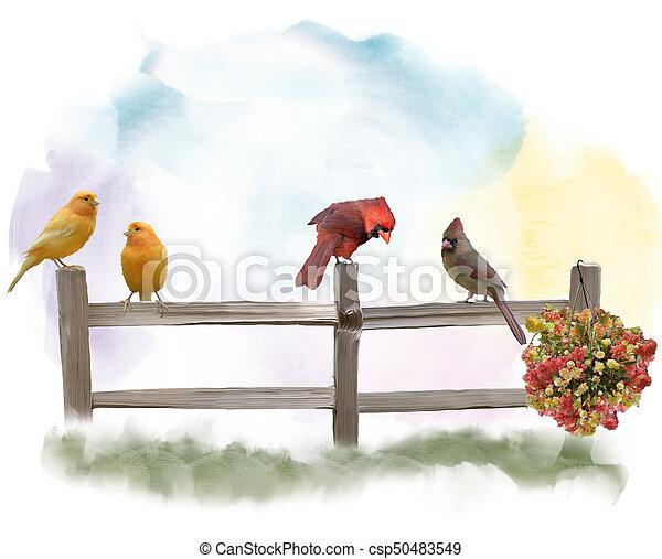 Birds on a Fence watercolor - csp50483549