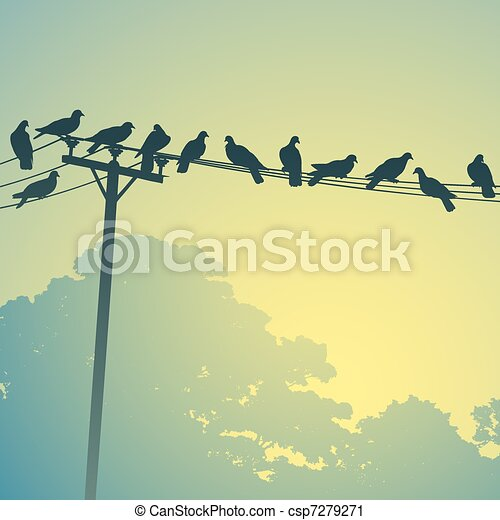 Birds on a Lines - csp7279271