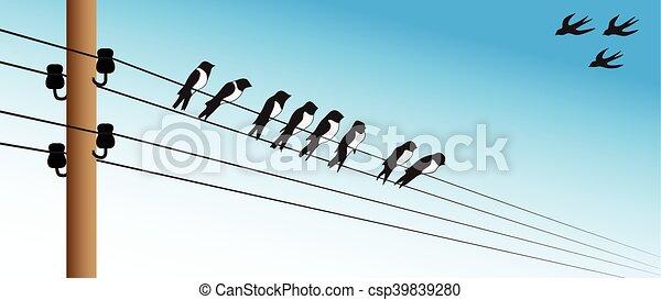 Birds on a wire - csp39839280
