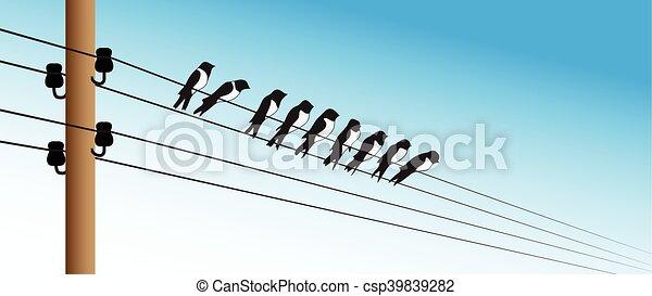 Birds on a wire - csp39839282