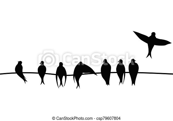 Birds on a wire vector illustration on white background - csp79607804