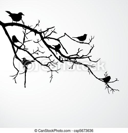 birds on branch - csp5673636