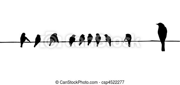 birds on wire - csp4522277