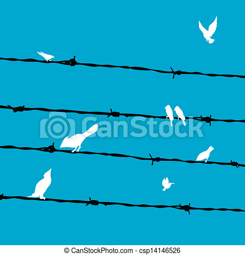birds on wires - csp14146526