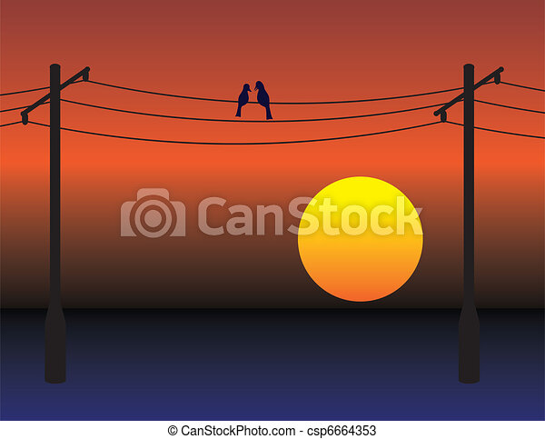 Birds on wires over sunset sky - csp6664353