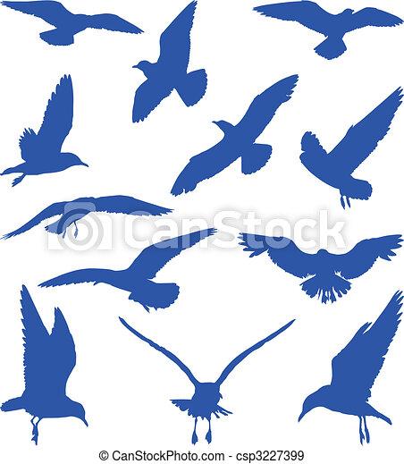 Birds, seagulls in blue silhouettes  - csp3227399