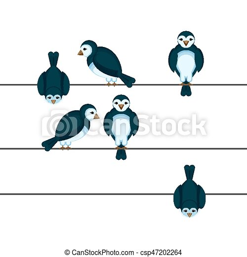 Birds sitting on wire in different positions vector illustration in ...
