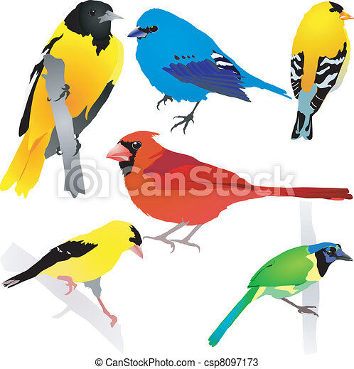 birds., vektor, eps10, samling - csp8097173