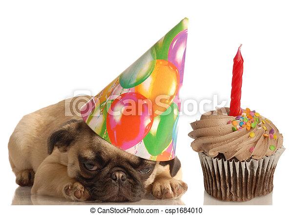 birthday, 犬 - csp1684010