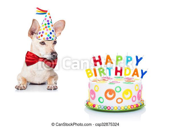 Awe Inspiring Birthday Cake Dog Chihuahua Dog Hungry For A Happy Birthday Cake Funny Birthday Cards Online Unhofree Goldxyz