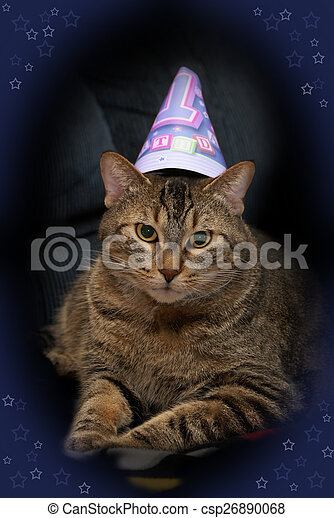 Birthday Cat An Adorable Picture Of A Celebrating The