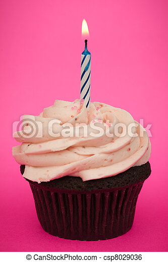 Birthday cupcake - csp8029036