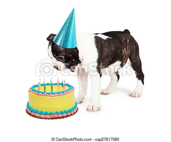 Birthday Dog Blowing Out Candles