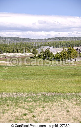 bison in Yellowstone - csp46127369
