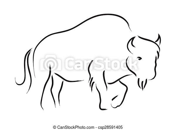 Bison - csp28591405