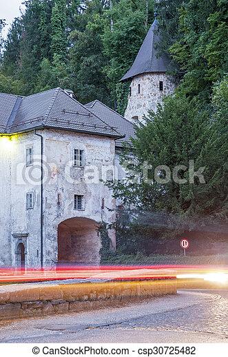 Bistra Castle in Slovenia - csp30725482