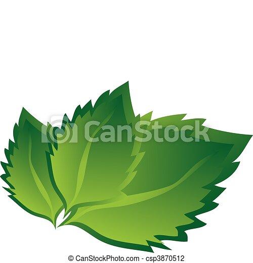 blätter, birke - csp3870512
