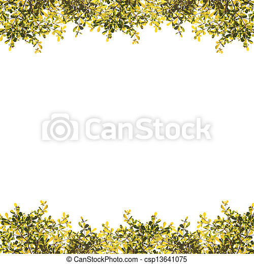 blätter, grün weiß, hintergrund - csp13641075