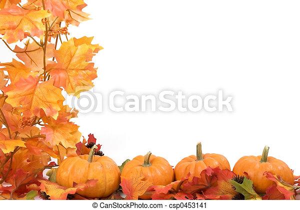 Kürbisse mit Herbstblättern - csp0453141