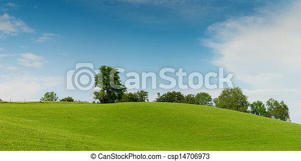 blå, eng, himmel, træer, grønnes høj, blød - csp14706973