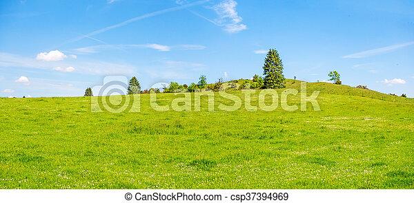 blå, eng, himmel, træer, grønnes høj - csp37394969