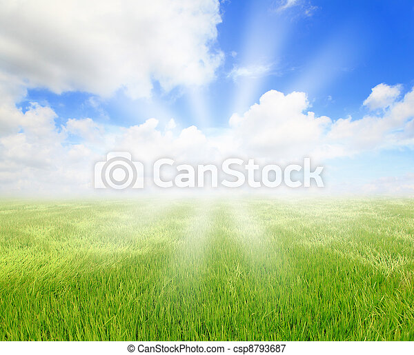 blåa gröna, solsken, sky, gräs - csp8793687