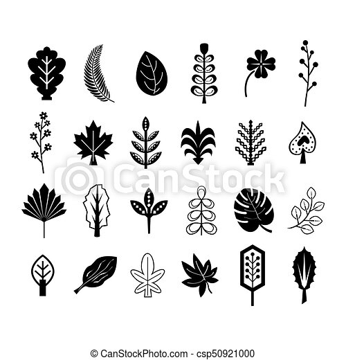 Black Abstract Silhouette And Line Summer And Tropical Leaves Icons Set
