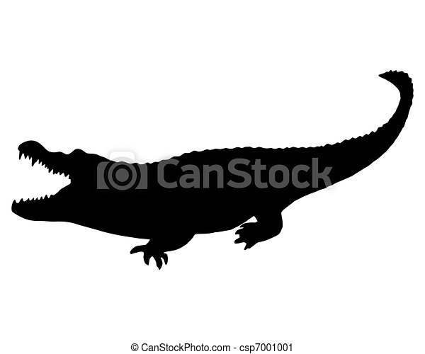 Black Alligator - csp7001001