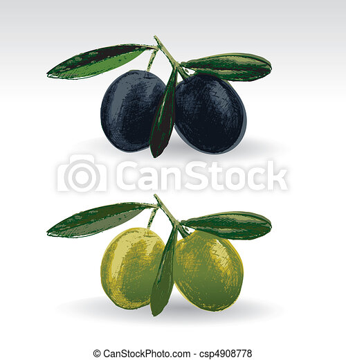 Black and green olives  - csp4908778