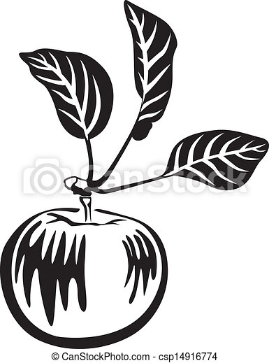 Black and white apple - csp14916774