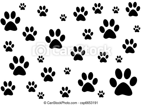 black and white background with paws  - csp6653191