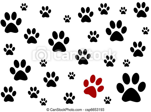 black and white background with paws  - csp6653193